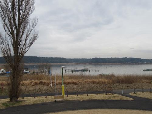双子公園から印旛沼を望む
