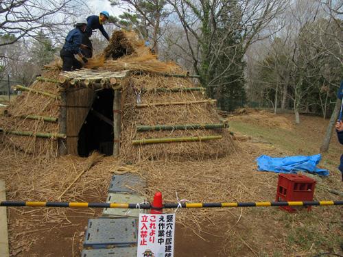 竪穴住居屋根葺き替え作業